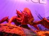 gamescom-2012-koeln-028