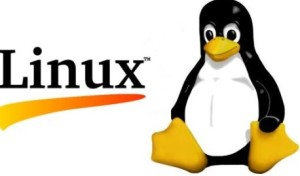 Linux bietet eine denkbare Alternative für Unternehmen