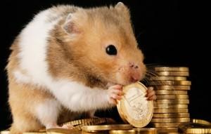 Geld hamstern lohnt sich