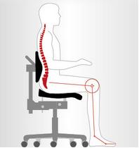 Der Rücken wird durch das viele Sitzen stark belastet